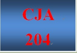 CJA 204 Week 1 Criminal Justice System Paper