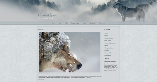 Wolf Wordpress Theme Website Design - Wolves, Canis Lupus, Wildlife