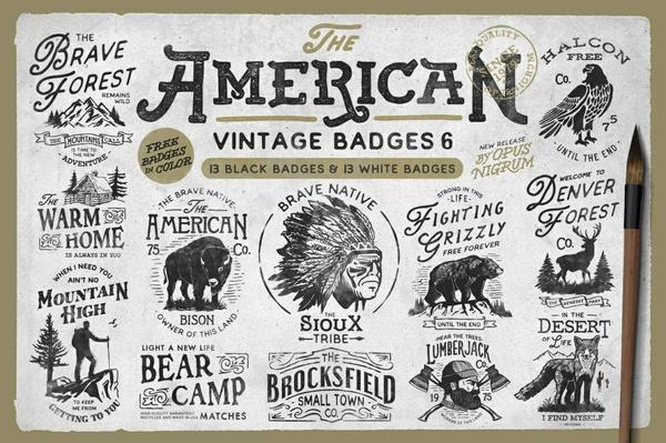American Vintage Badges 6