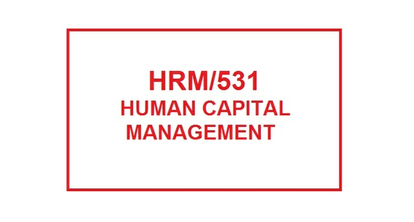 HRM 531 week 4 Performance Management Plan