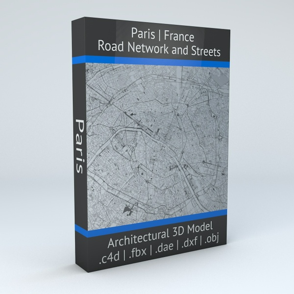 Paris Road Network Architectural 3D Model
