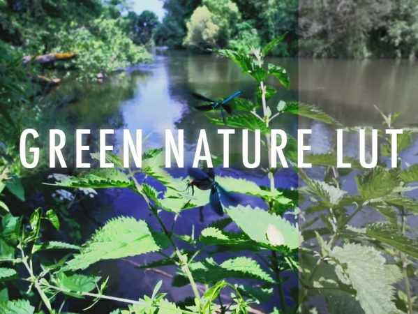 GREEN NATURE LUT (for Sony a6300 a6500)
