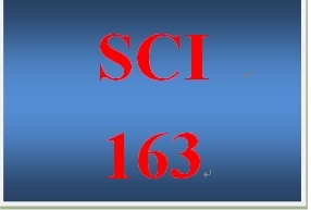 SCI 163 Week 4 Toolwire GameScape Episode 4 Infectious Diseases and Environmental Effects on