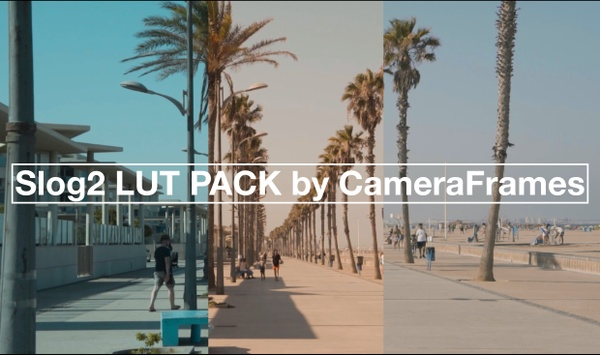 Slog2 SUMMER LUT Pack by CameraFrames