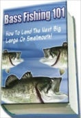 Bass Fishing 101: How To Catch The Next Big One