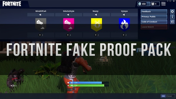 Fortnite Fake Proof Pack