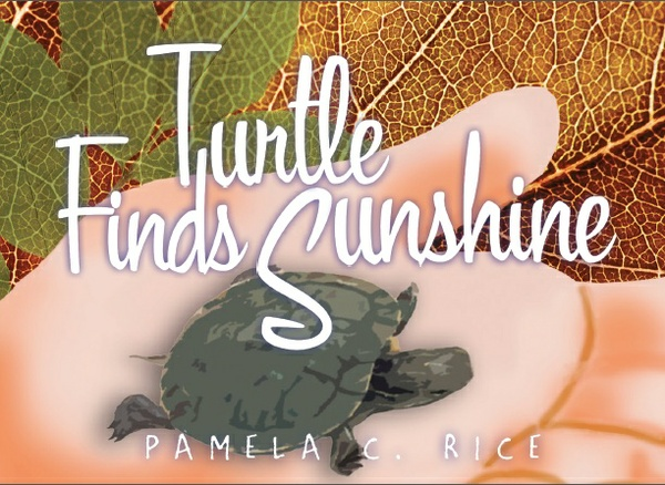 Turtle Finds Sunshine — Written and Illustrated by Pamela C. Rice