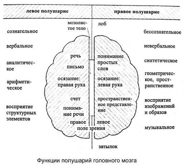 """Видеокурс """"Вербальные практики активации и синхронизации полушарий головного мозга"""""""