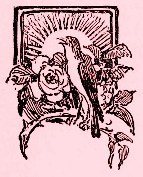 Audiolibro: El ruiseñor y la rosa