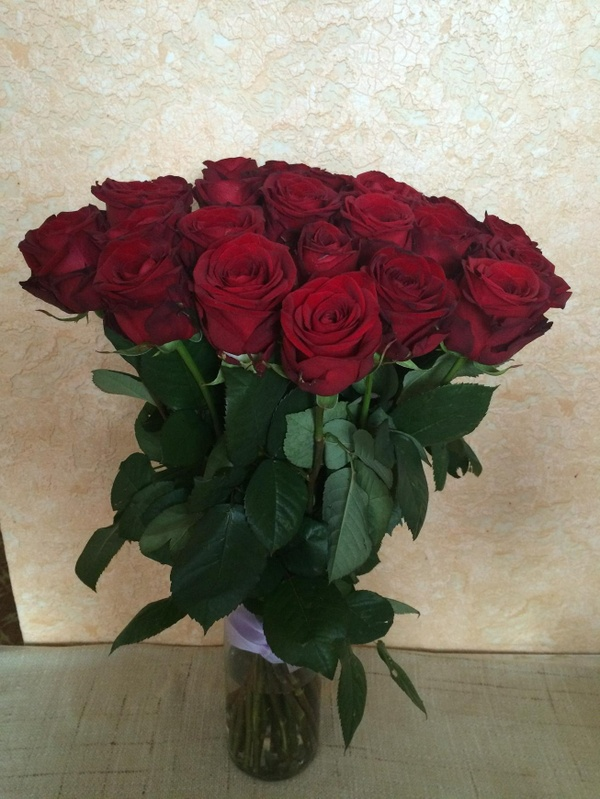 A bouquet of delightful roses!