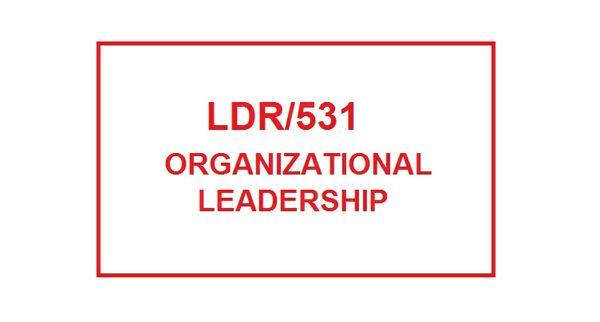 LDR 531 Week 2 Professional Development Plan