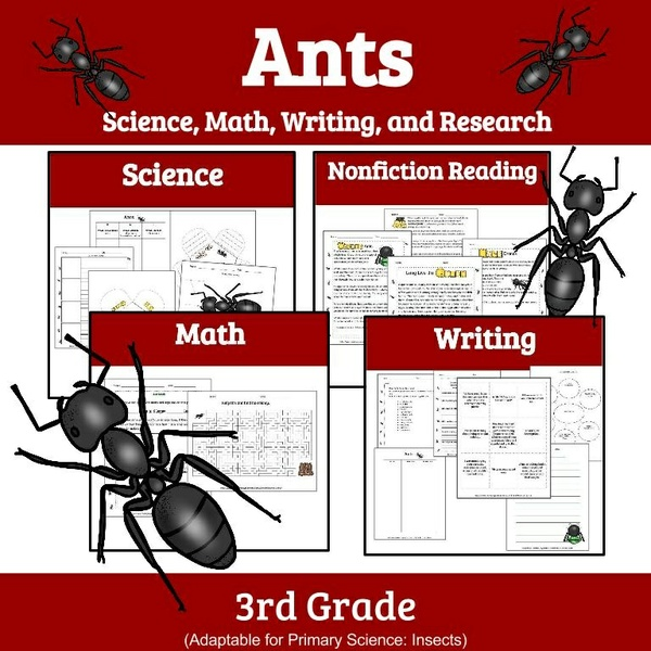 ant 102 study guide i Study guide for physical anthropology 102, exam #1 use this guide to focus your studies the exam will be true/false, multiple choice, fill in the blank, and short answer.