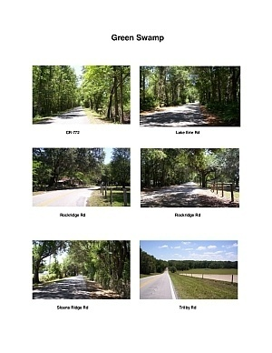 Green Swamp Scenic Motorcycle Ride (Dade City)
