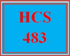 HCS 483 Week 4 IT Project Implementation Failures