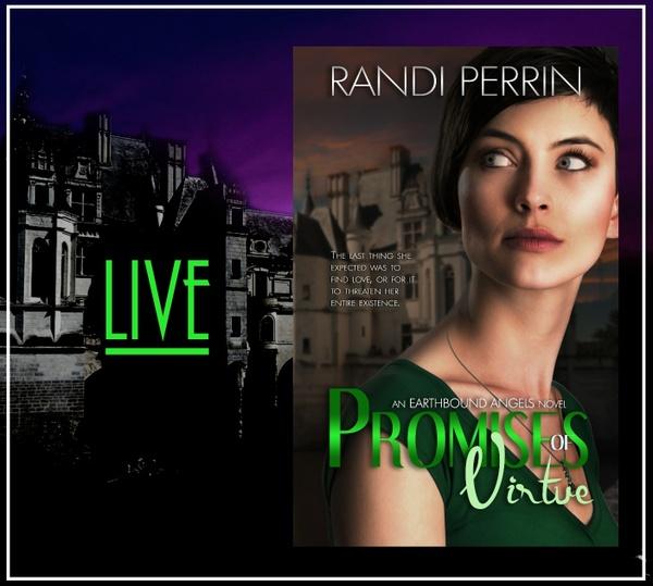 Mobi Promises of Virtue by Randi Perrin