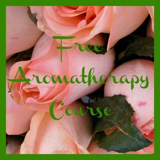 Free Aromatherapy Course Fee