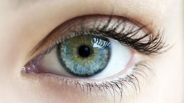 EyeSight Sharpener Ultra Session