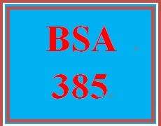 BSA 385 Week 5 Week Five Learning Team: Weekly Team Log/Summary