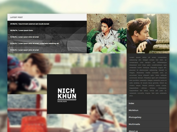 WordPress / Premium Theme #03