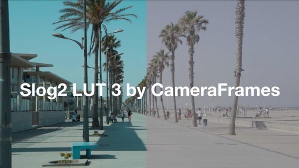 Slog2 SUMMER LUT 3 by CameraFrames