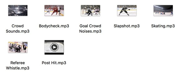 Custom Hockey Sound Effects: MP3