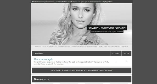Premade 18 (Coppermine Theme)