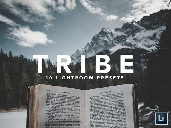 10 LIGHTROOM PRESETS |TRIBE