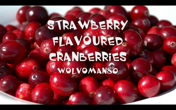 Strawberry Flavoured Cranberries - WOLVOMAN80