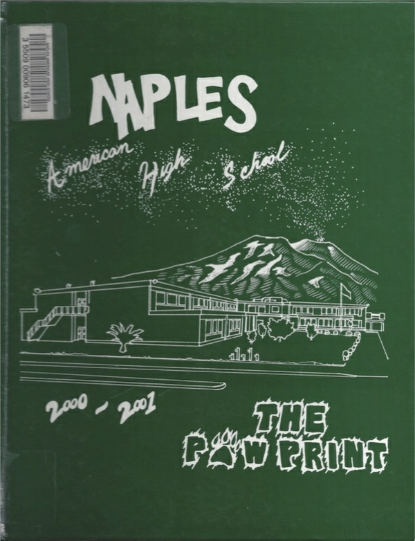 2001 Naples American High School Log