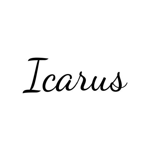 Icarus b11