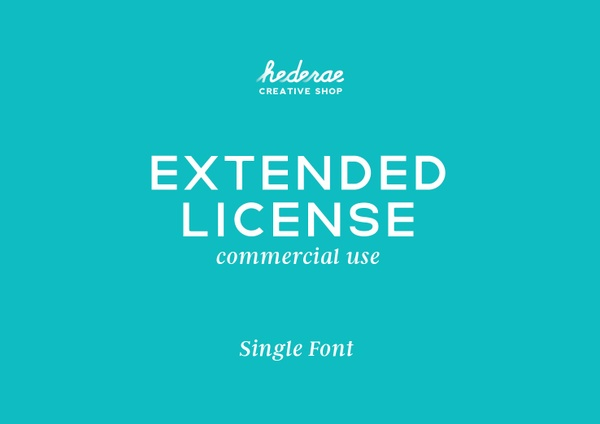 Extended License - Commercial Use (Single Font)
