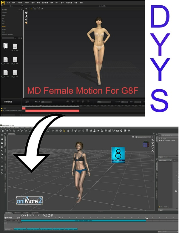MD Female Motion For G8F