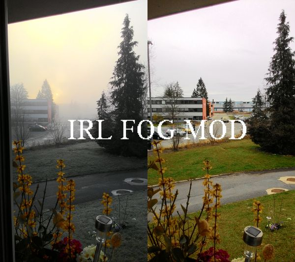 bo1 fog