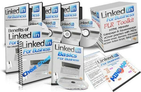 NEW! Linkedin For Business! PLR Reseller Rights!