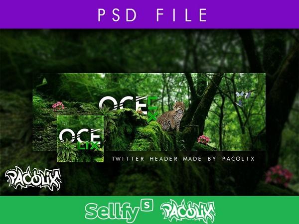 Ocelix Header PSD File [Pacolix]