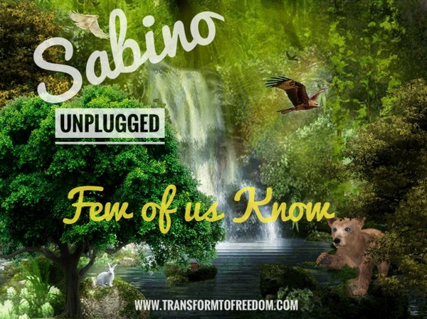 """Few of us Know"" Sabino, Unplugged"