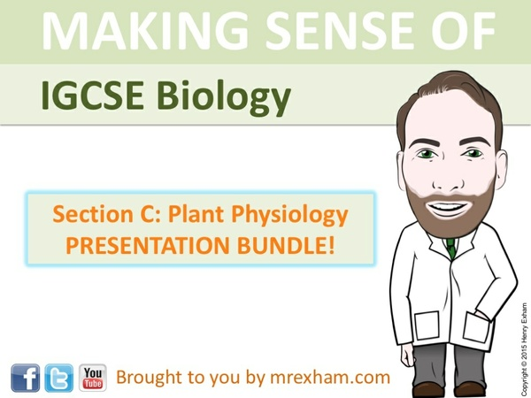 IGCSE Biology - Plant Physiology Presentation Bundle
