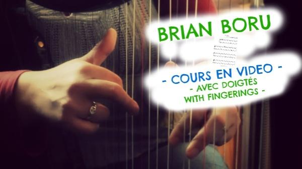 79-BRIAN BORU VIDEO COURSE PACK