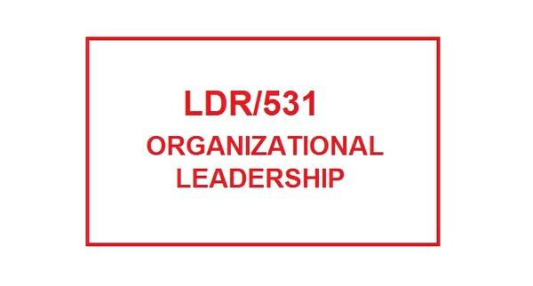 LDR 531 Week 3 Mentorship Meeting Worksheet