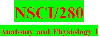 NSCI 280 Week 1 Anatomy & Physiology Revealed Worksheets