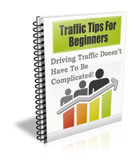 Traffic Tips for Beginners PLR