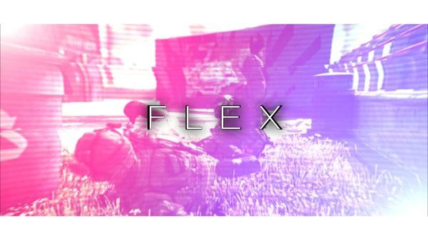 F L E X