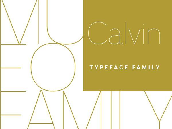 Calvin family