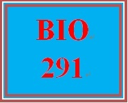 BIO 291 Week 2 Anatomy & Physiology, Ch. 20
