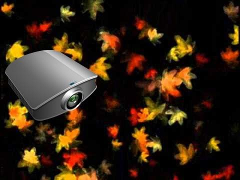 Digital Leaves Projection - Autumn Decoration