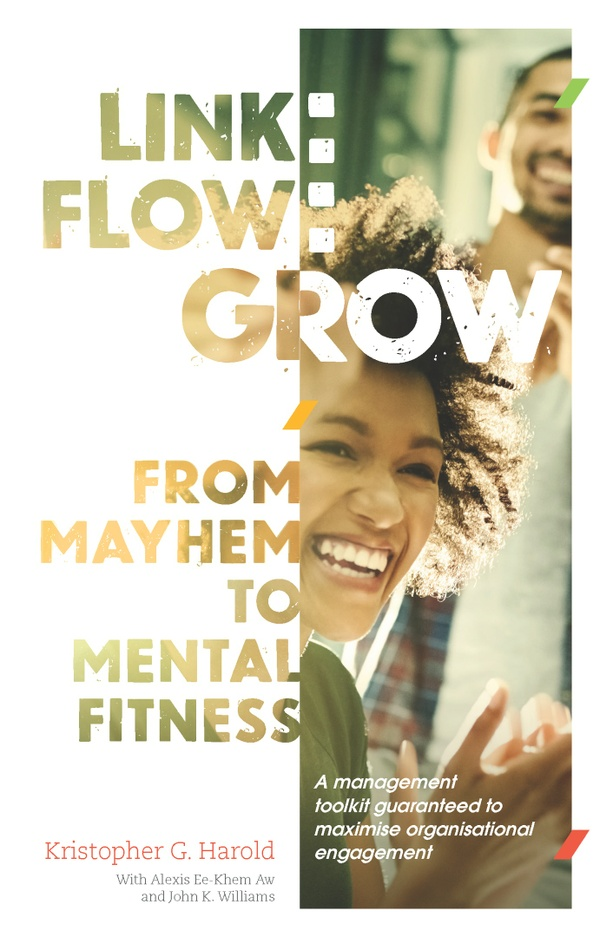 Link: Flow: Grow | From Mayhem to Mental Fitness