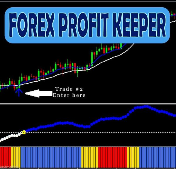 How to day trade forex for profit harvey walsh