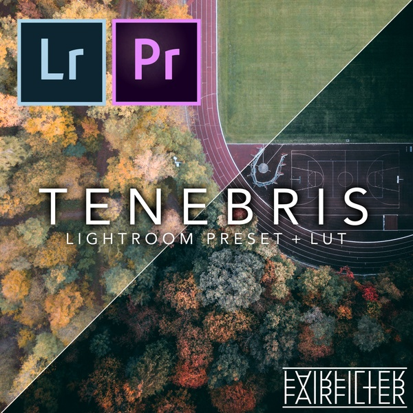 TENEBRIS Lightroom Preset + LUT