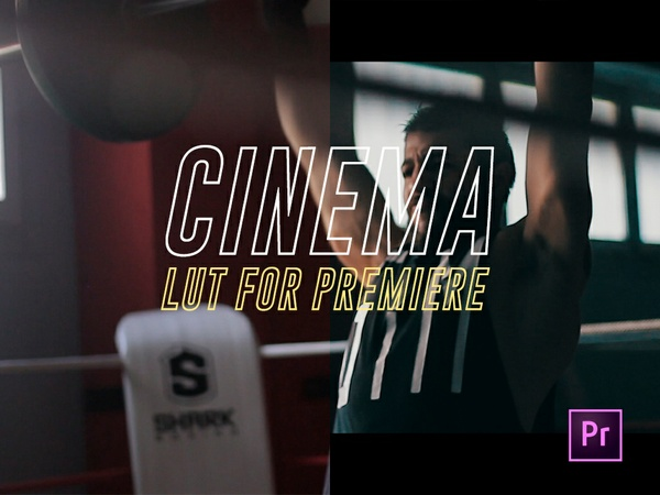 CINEMA LUT FOR PREMIERE