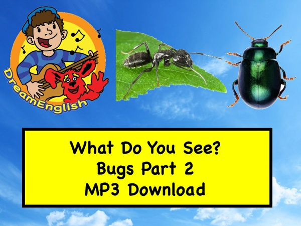 What Do You See? Song Bugs Part 2 MP3 Download